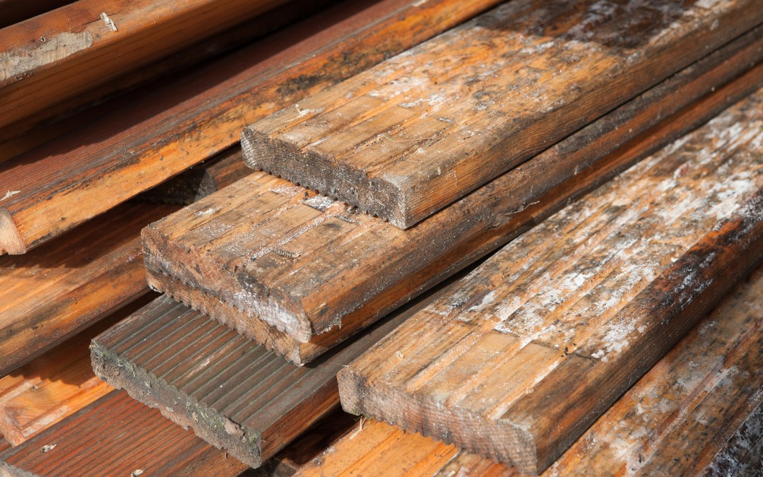 How To Identify (And Deal With) Damp In Floorboards